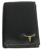Мужское кожаное портмоне ALWAYS WILD SRM04BAW3 черный, фото 1