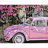 Набор картина по номерам Цвета весны 40х50см, акриловые краски, кисти, холст