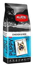 Сухий корм для цуценят і молодих собак Alice (Еліс) Puppy Junior з куркою та рисом, 17 кг Акція