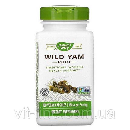 Nature's Way, корень дикого ямса, 850 мг, 180 веганских капсул, фото 2