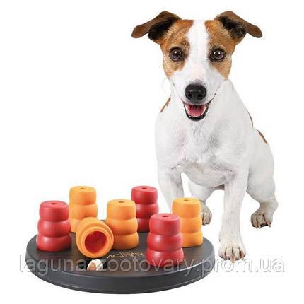 """Стратегічна гра """"Солитэр"""" для собак дрібних порід, фото 2"""