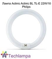 Лампа Actinic Actinic BL TL-E 22W/10 Philips, фото 1