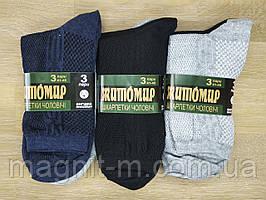 """Чоловічі шкарпетки літні """"Житомир"""" Елементи сітки. Скріплені етикеткою по три пари. Три кольори. №080S(3)."""
