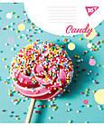 Тетрадь А5 36 Лин. YES Candy, 15 шт/уп., фото 4