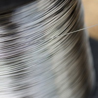 Проволока нержавеющая жаропрочная нихром 0,32 мм Х20Н80