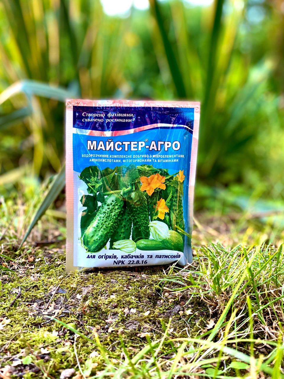 Добриво MASTER AGRO для огірків, кабачків, патісони 100 гр