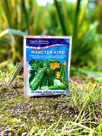 Добриво MASTER AGRO для огірків, кабачків, патісони 100 гр, фото 2
