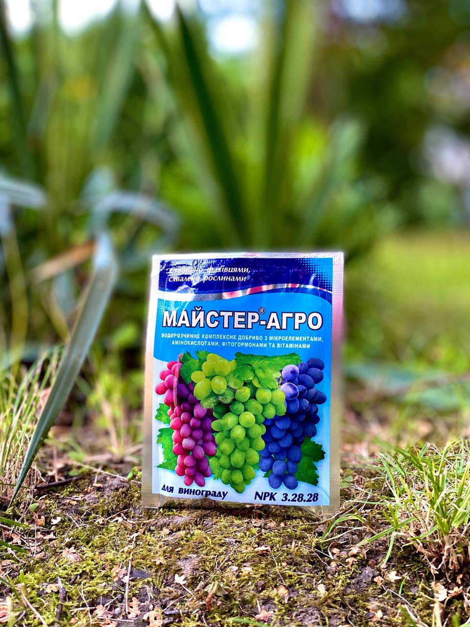 Майстер-Агро для винограду, 25 г