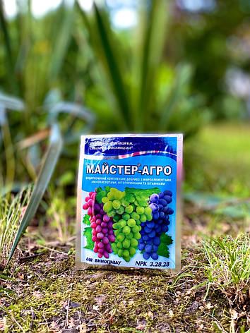 Майстер-Агро для винограду, 25 г, фото 2