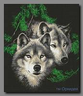 """Схема для полной вышивки бисером """"Волки"""""""