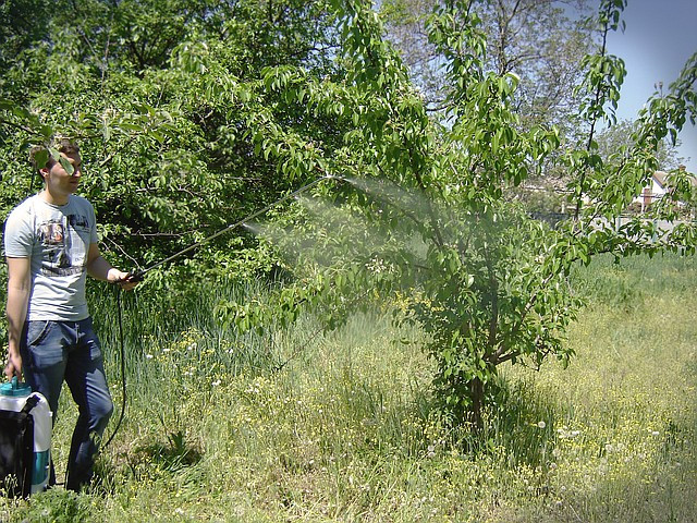 опрыскиватель аккумуляторный садко spr-20e для сада фото
