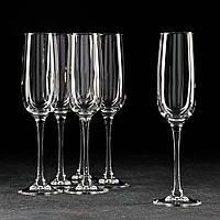 Набор бокалов для шампанского 175 мл Аллегресс  Arcoroc.
