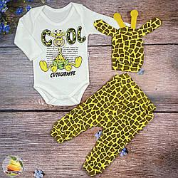"""Боді, штанці і шапочка """"Жираф"""" Розміри: 62,68,74 см (02119)"""