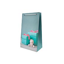 Пакет подарочный Sabona 10*18*6 см Сабона ПВ 0298