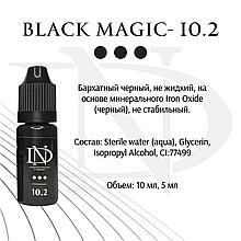 Пигмент для глаз Black Magic -10.2