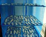 """Сітка для сушіння риби Stenson """"U"""" SF24146-45 3 яруси, 45х45х68 см, фото 2"""