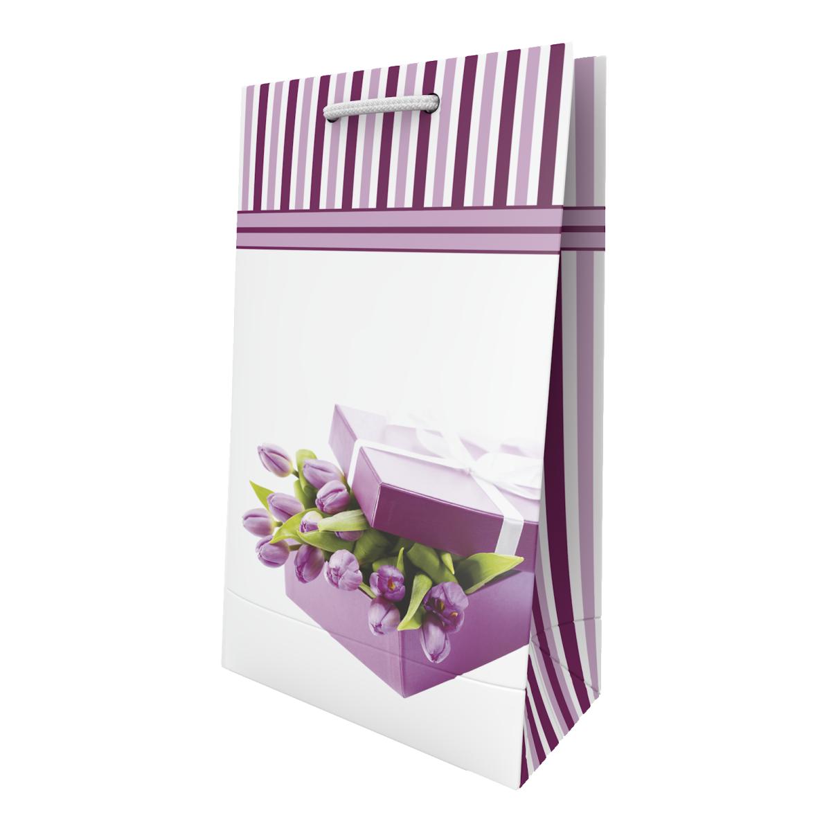 Пакет подарунковий Sabona 15*25.5*7.5 см Сабона