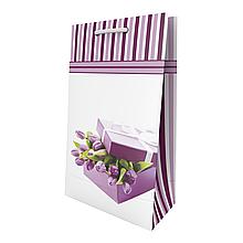 Пакет подарочный Sabona 15*25.5*7.5 см Сабона