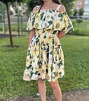 Сукня брендове Dolce Gabbana (Дольче Габбана)