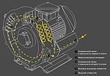 Компресор двоступінчастий для басейну Grino Rotamik SKS 80 2VM.B (88 м3/год) 0,7 кВт, фото 6