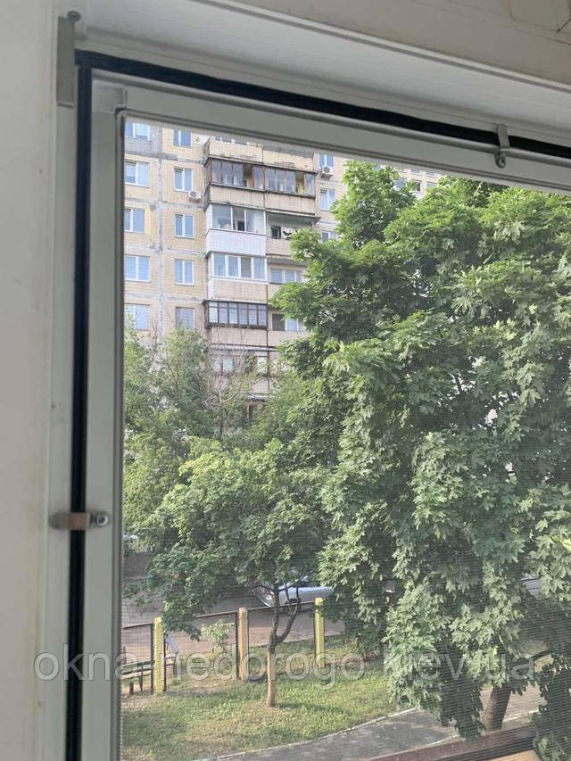 Москітні сітки Київ фото Вікна Недорого