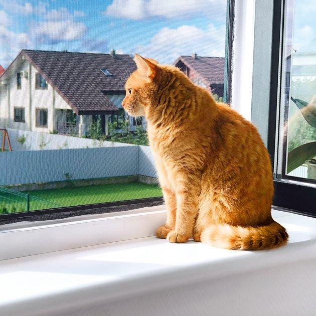 Антимоскитные сетки на двери и окна