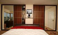Шкафы-купе 2-х дверные ДСП-зеркало недорого, фото 1