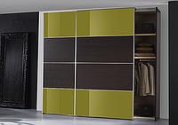 Шкафы-купе стильные для уверенных в себе людей, фото 1