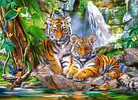 "Пазли 300 їв. Castorland ""Tiger Falls"" 030385"