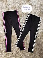 Штани для дівчаток Grace 134-164 р. р., фото 1