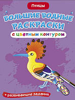 Птицы. Большие водные раскраски с цветн контуром.(мягк)