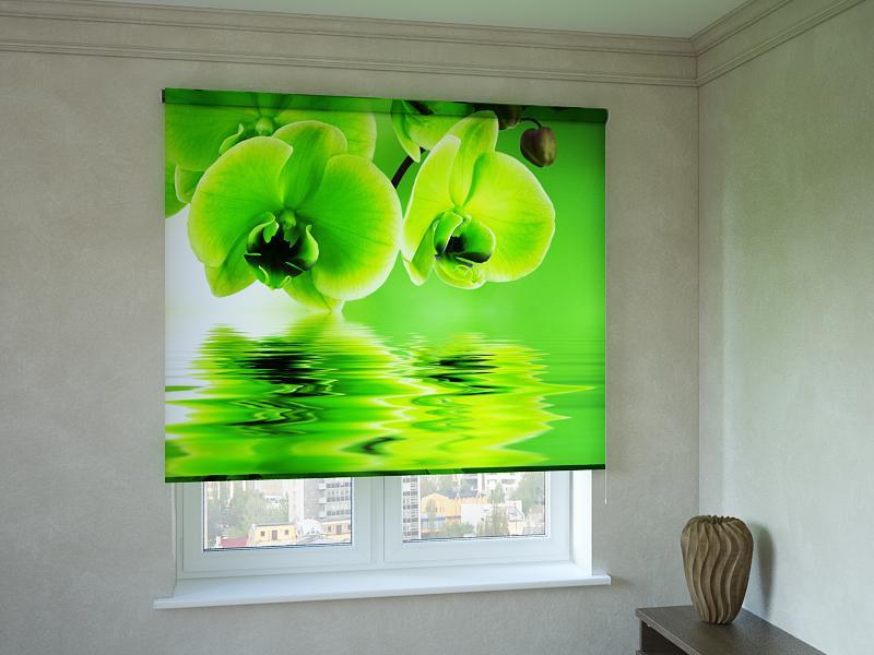 Рулонні штори з фотодруком салатова орхідея