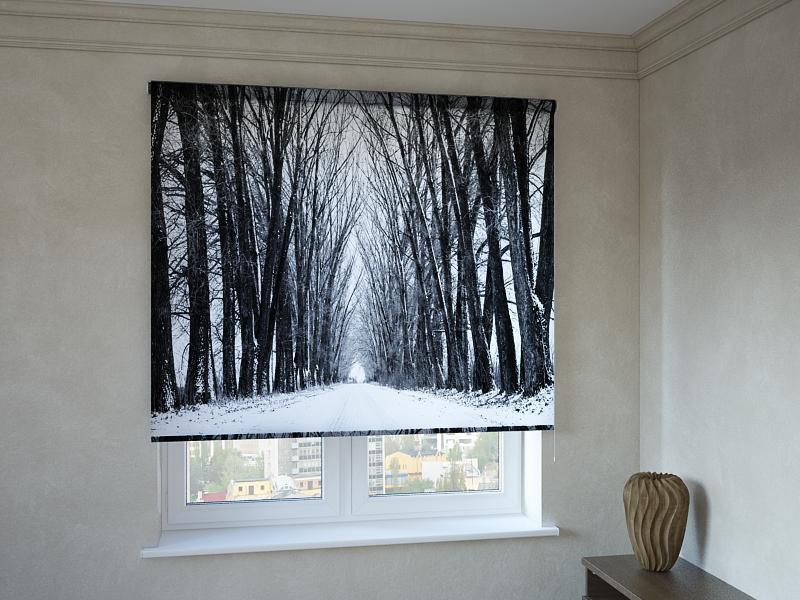 Рулонні штори з фотодруком зимова алея