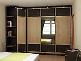 Шкафы-купе для джентельменов, фото 5