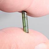 Колекційний мінерал зелений турмалін Верделит, комплект 5 шт., 833ФГВ, фото 3