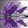 """Набір алмазної вишивки """"Відображення метелики"""""""