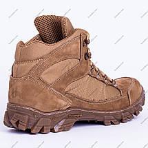 Ботинки Тактические, Зимние Торнадо Песочные, фото 3