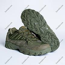 Тактичні Кросівки ESDY PREDATOR OLIVE, фото 3