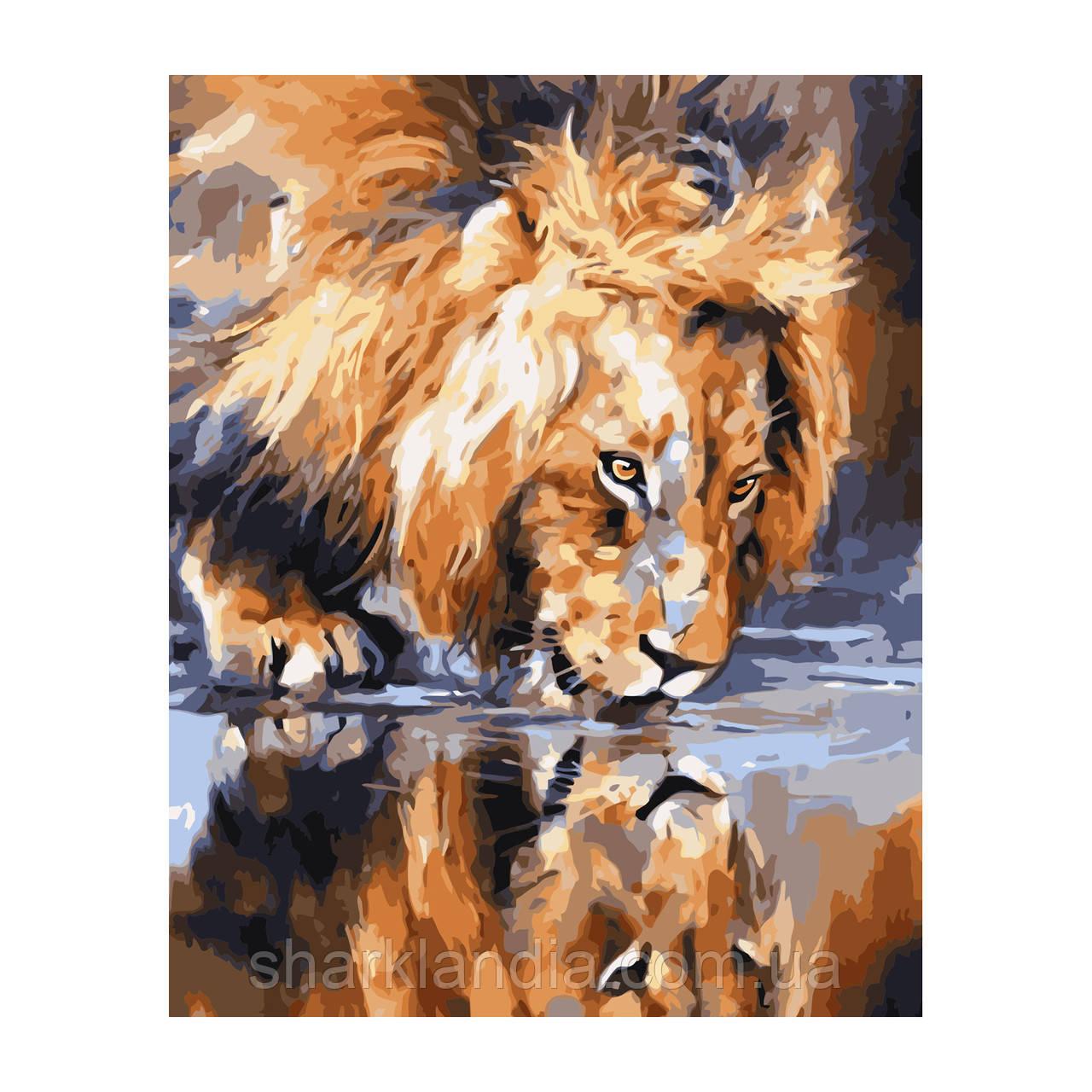 Картина по номерам Лев на водопое 40*50см Strateg Раскраски Хищные