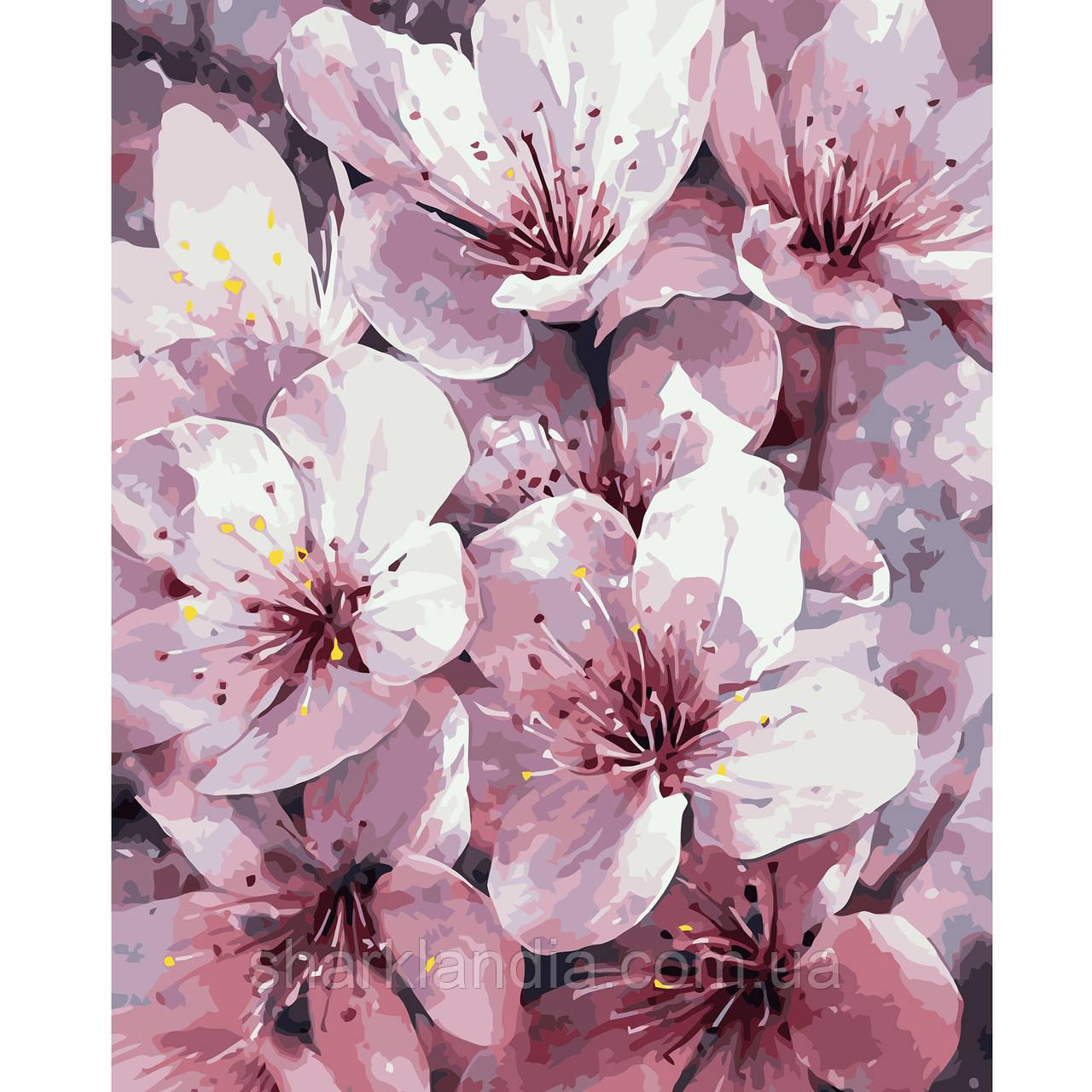 Картина по номерам Сакура 40*50см Strateg Раскраски Цветы