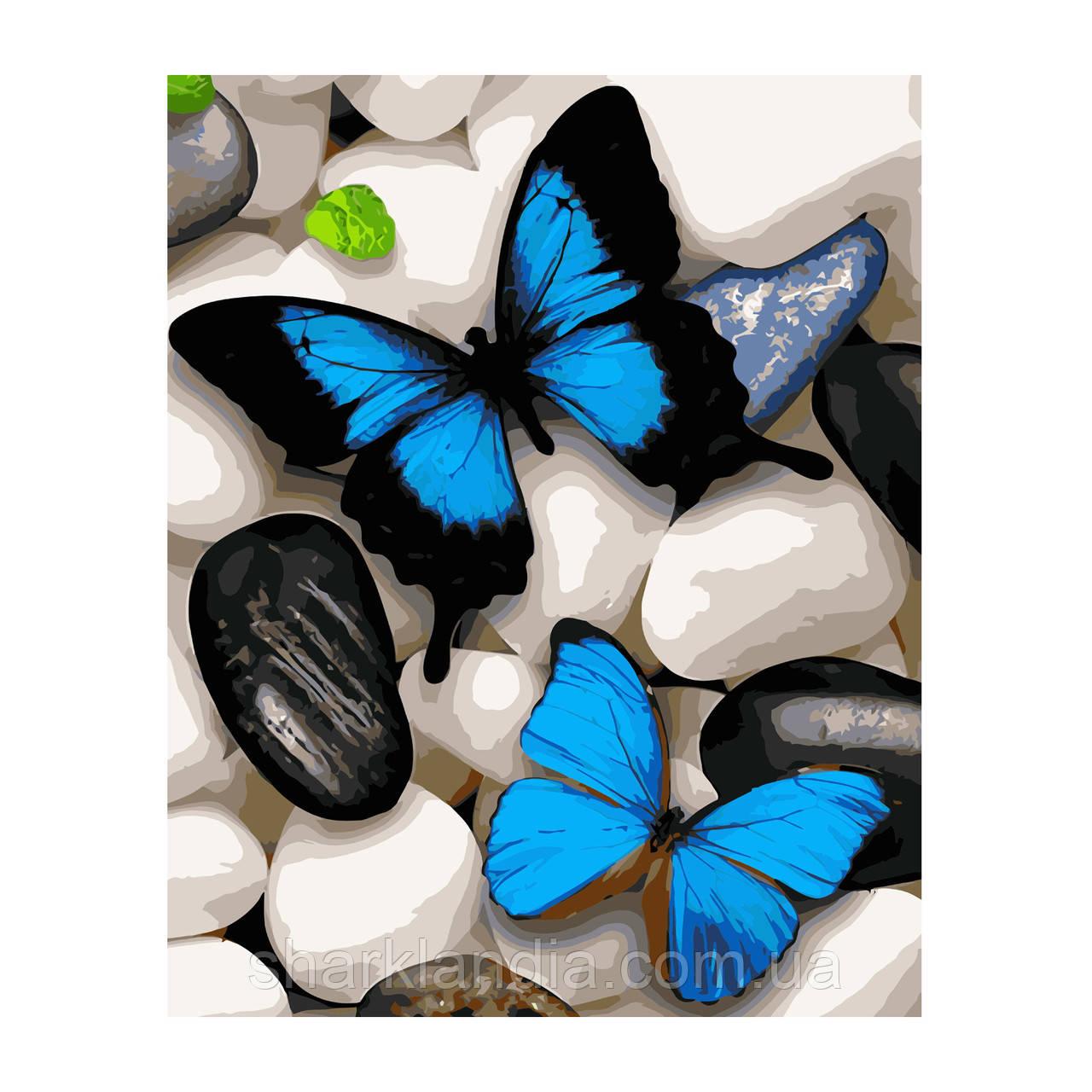 Картина по номерам Синие бабочки на камнях 40*50см Strateg Раскраски Бабоачка