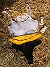 Жіночий купальник жатка з білим топом і низькими плавками бразилианы (р. S, M) 9025898, фото 4