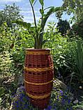 Підлогове кашпо для квітів, фото 4