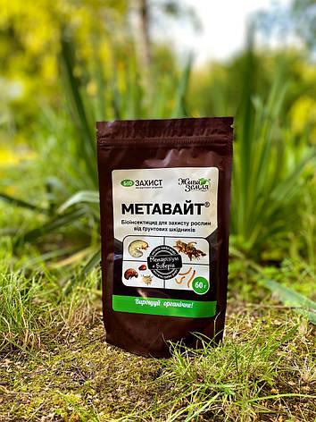 Метавайт (метаризин) 60 г, фото 2