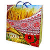 Пакет подарунковий пейзаж / орнамент