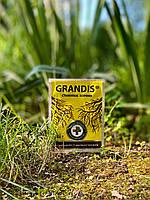 Грандіс - 10 г корінь
