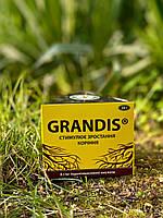 Грандіс - 50 г корінь
