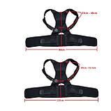 Магнітний коректор/корсет для спини хребта, постави, ключичный-поперековий «L-XL» PL, фото 6