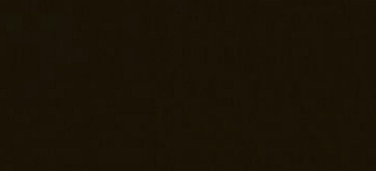 Непрозора фарба для зовнішніх робіт OSMO LANDHAUSFARBE 2607 темно-коричнева