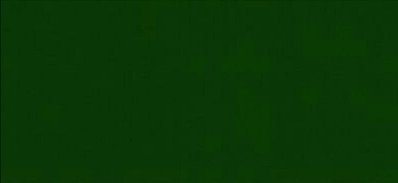 Непрозрачная краска для наружных работ OSMO LANDHAUSFARBE 2404 темно-зеленая
